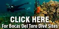 dive sites in Bocas Del Toro