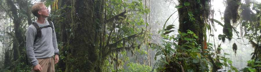 Cloud Forest Safari & Wildlife Tour